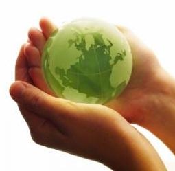 miljö policy